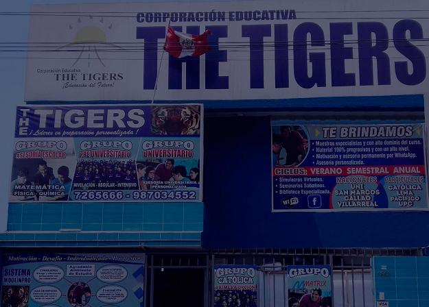 Frente-The-tigers-1