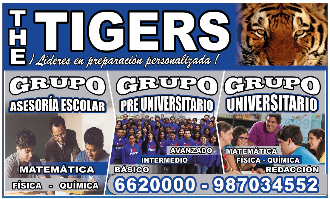 Grupos de Estudio The Tigers