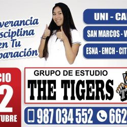Publicidad Octubre 2018 The Tigers
